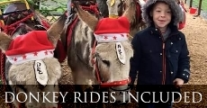 Donkey rides for children included in the Reindeer Lodge ticket price